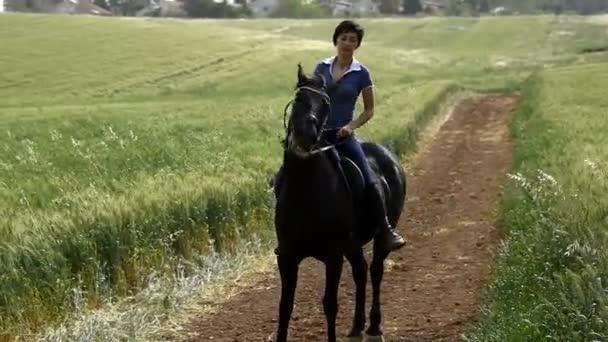 Girl saddle up a horse