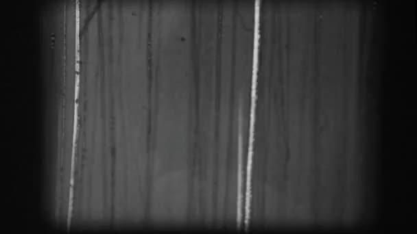 Filmu nehráli 8mm vůdce pásku 5. mov