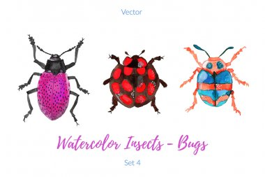 Set of hand painted watercolor insects