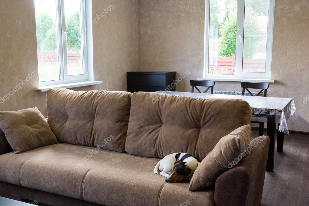 hond slaapt op Bank in de woonkamer van een country house ...