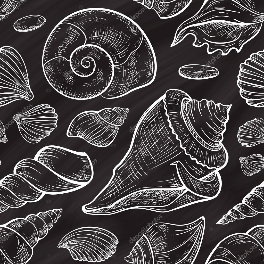 Vector seashells seamless pattern. Chalkboard style.