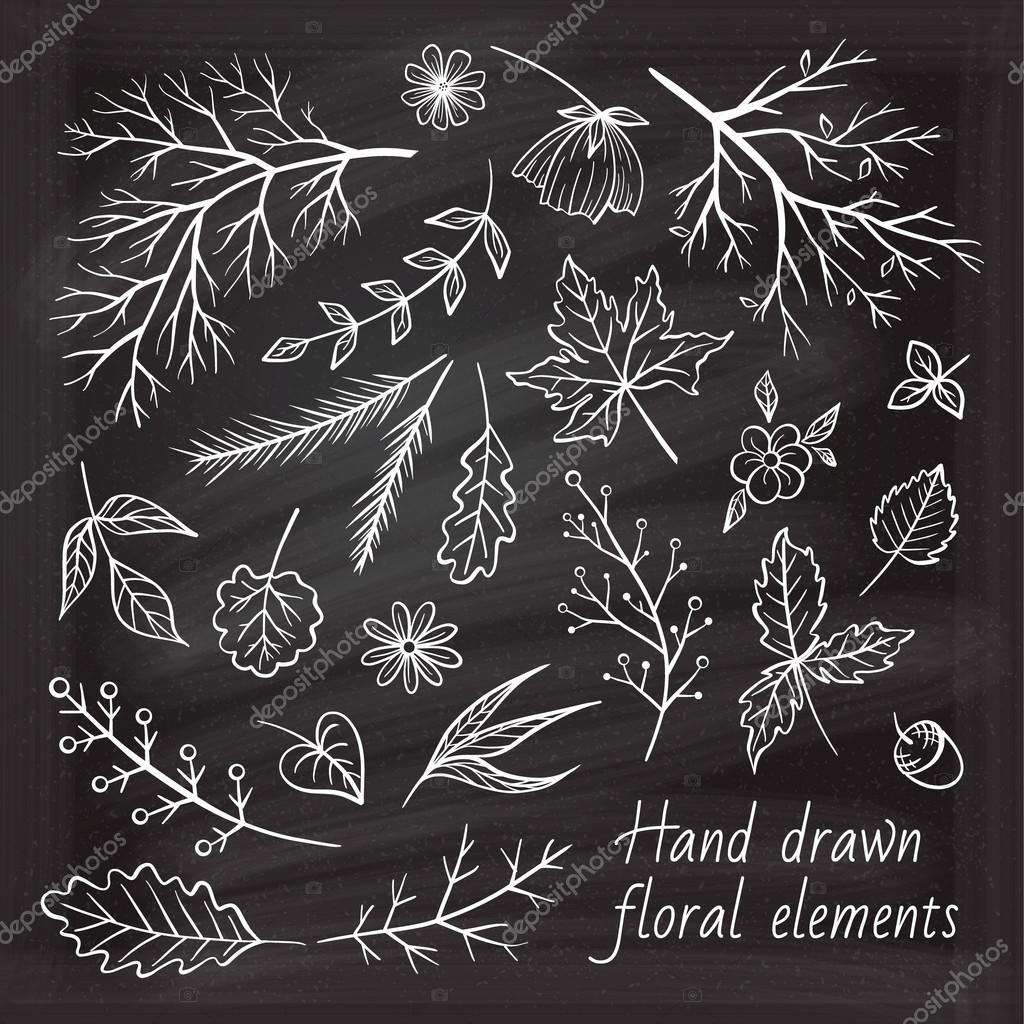 Vector chalk doodles herbal elements set.