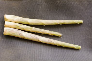 Bamboo shoots or bamboo sprouts are the edible shoots