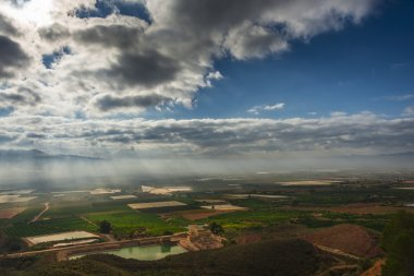 Fields cultivated in Murcia, Spain II