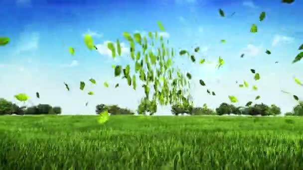Eco zöld autó készült levelek, a zöld mezőben. (Benne alfa)