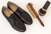 Izolované hnědé boty a prostředky na ošetřování obuvi - boty a kartáč