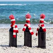 Fotografia Regali di Natale. Tre bottiglie di vino in cappelli lavorati a maglia e scarv