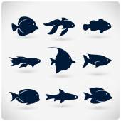Ploché ryby silueta
