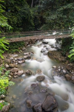 Poring Hot Spring, Sabah, Borneo Malaysia