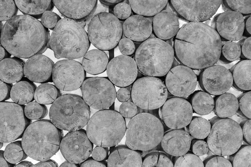 Schwarz und weiß Holz Querschnitt Muster — Stockfoto © mezairi #74133827