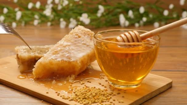 Složení medu a plástev. UT kousek plástve (ne 12.2)