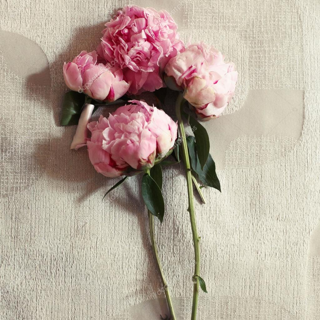 pale pink and white peonies