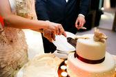 nevěsta a ženich řez svatební dort