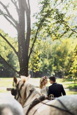 Fairy tale happy wedding couple