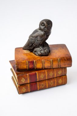 The wise owl sits on the wise books.