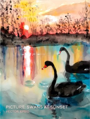 "Картина, постер, плакат, фотообои ""лебеди в пруду на закате, векторная версия картин маслом на шёлке картина постеры все"", артикул 76867607"