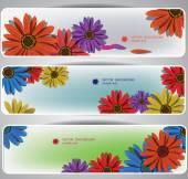 Barevné květy nápisy