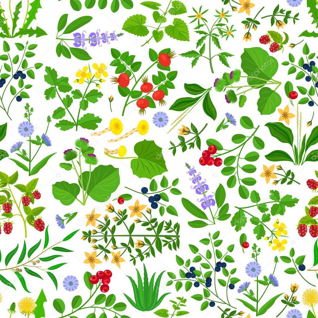 Wild herbs, flowers and berries pattern