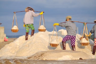 Ninh Hoa, Vietnam - March 2, 2012: Vietnamese women are burdening hard to collect salt from the extract fields to the storage fields