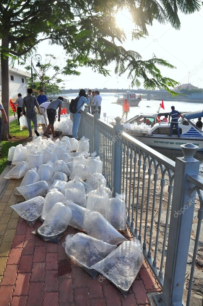 Ho Chi Minh city, Vietnam - April 24, 2015: Fishes are kept in plastic bags preparing to be released in the Saigon river in the National Fisheries day in Vietnam