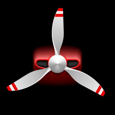 Light airplane with propeller