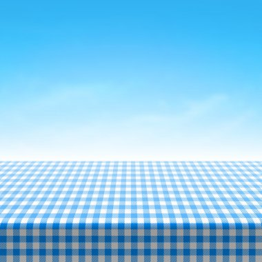 Table covered with blue checkered tablecloth.