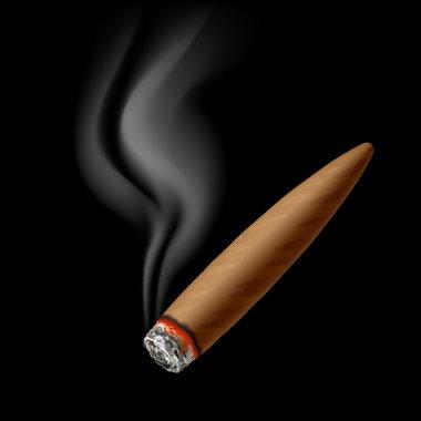 Cigar with smoke on black
