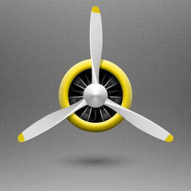 Vintage aircraft propeller with radial engine