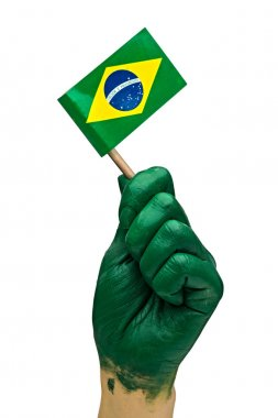 Brazilian fan patriot with flag