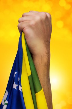 Brazilian fan patriot with flag