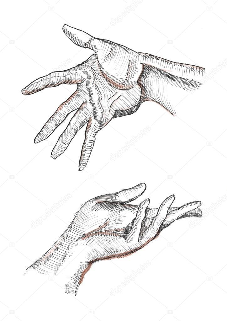 Expressive links und rechts menschliche Hände mit sichtbaren Palm ...
