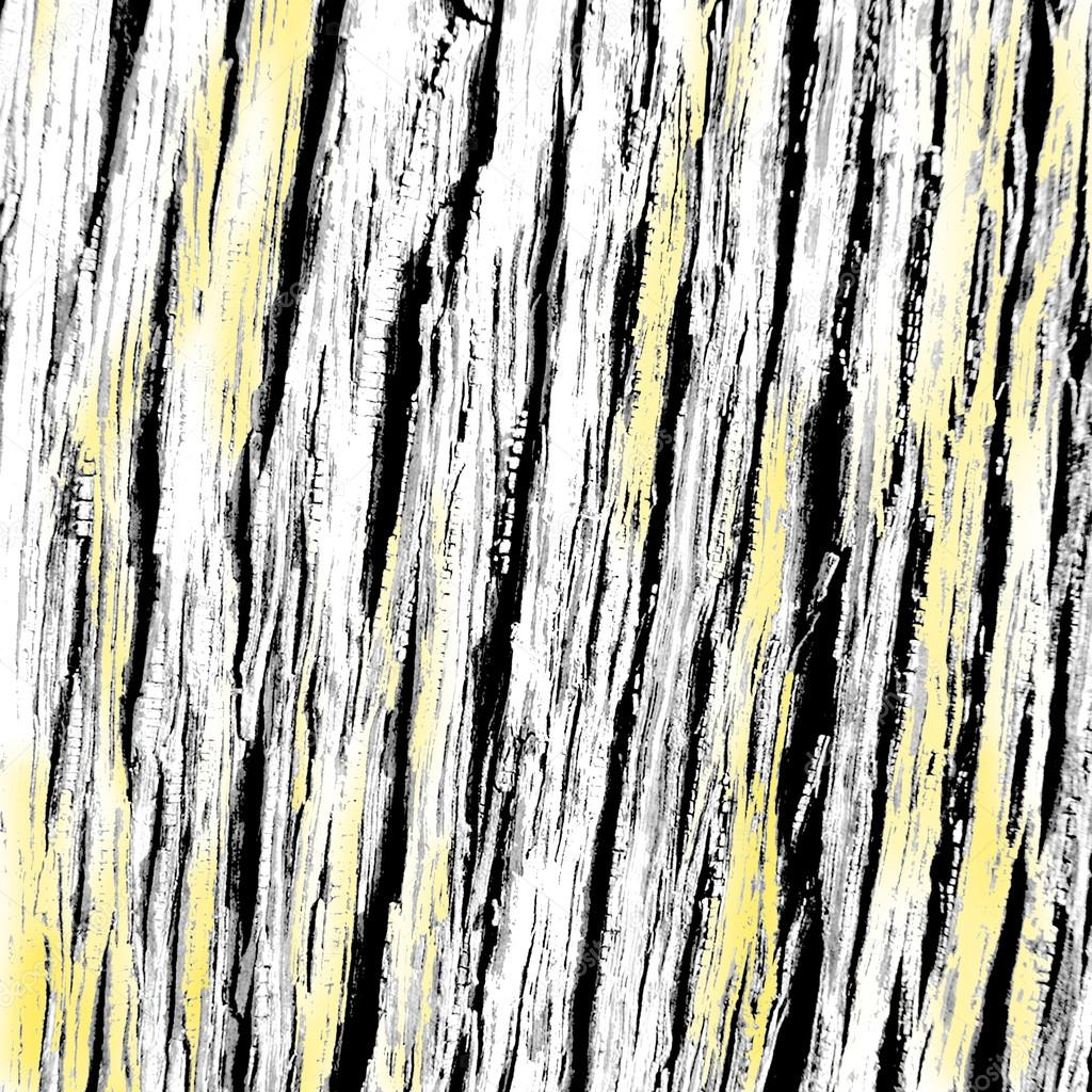 Oak wood black, white and yellow texture from bark