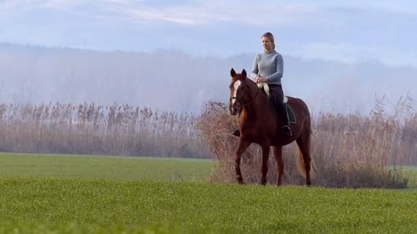 Šťastná dívka jízda na koni na zrno
