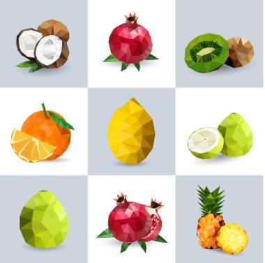 Set of polygonal fruit - coconut, pomegranate, kiwi, orange, lemon, grapefruit, pineapple