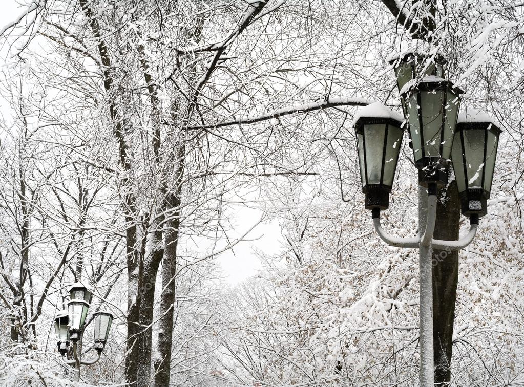 Beautiful snowfall in the town
