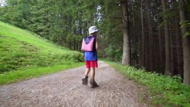 Child walking toward a forest