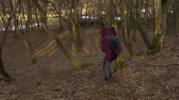 Woman in purple jacket walking down a hill in a forest acting silly.  Lady happy to have survived a hike through Hoia Baciu, a famous haunted forest in Romania.