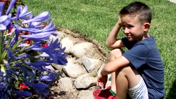Boy sitting in the park looking at the flowers