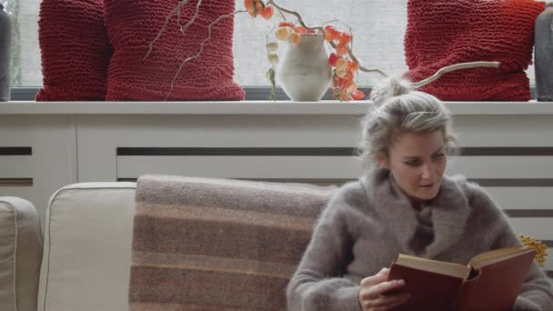 Wideshot of a young woman reading a book on a modern couch in her living room while feeling happy and inspired with room for text