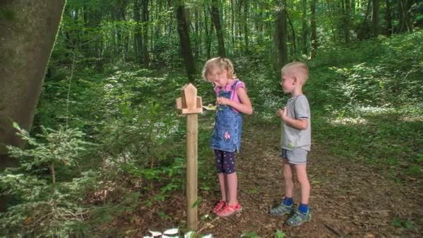 Young boy and young girl exploring the woods while playing games designed to learn about environment.