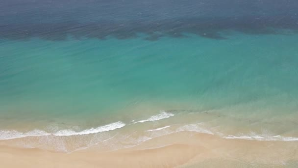 aerial drone shot of a beautiful beach with clear water in Fuerteventura in the Canary Islands