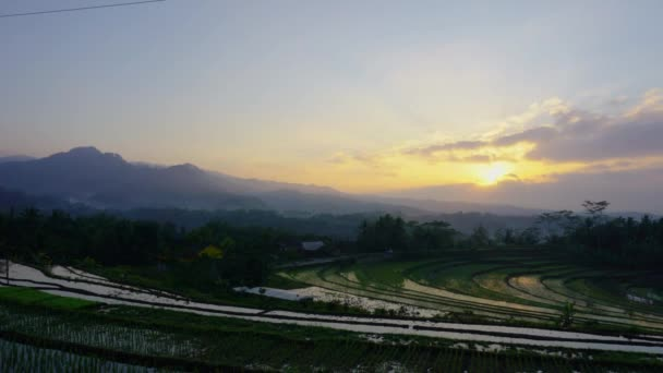 Scenic sunrise over rice fields on hills of Magelang, Indonesia, time lapse