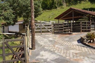Farm Bullpen - nature