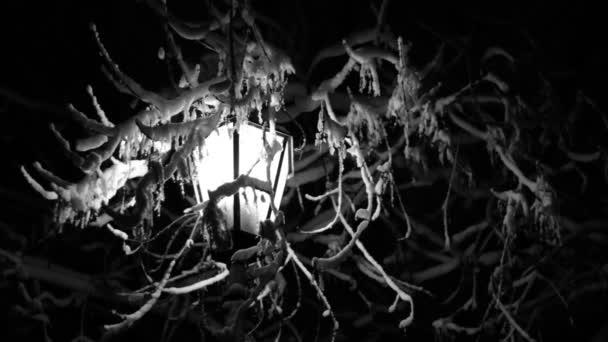 Noční zimní Street Lamp sníh taje černobílé záběry 2