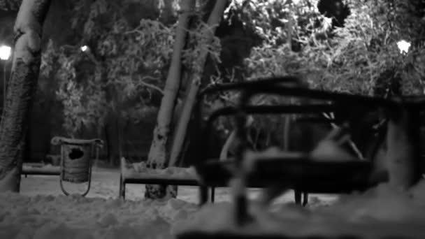 Noční zimní Sad prázdné veselé obejít točení v hřiště černobílé záběry