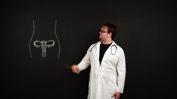 Profesor stojící na tabuli vysvětluje, jak je ženský reprodukční systém uspořádán