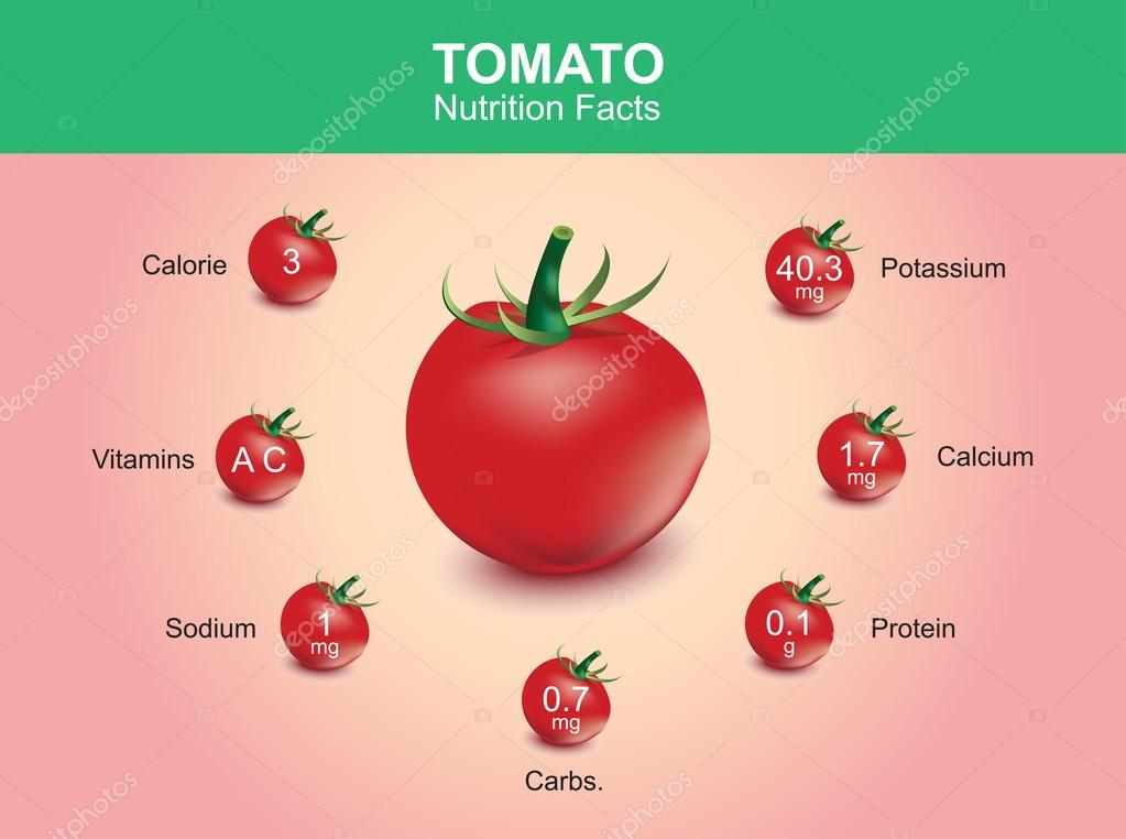 tomato nutrition facts, tomato fruit with information, tomato vector