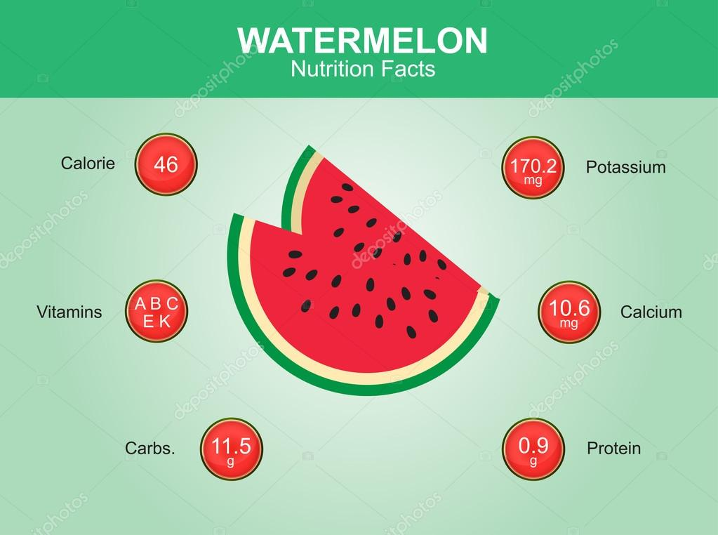 watermelon nutrition facts, watermelon fruit with information, watermelon vector