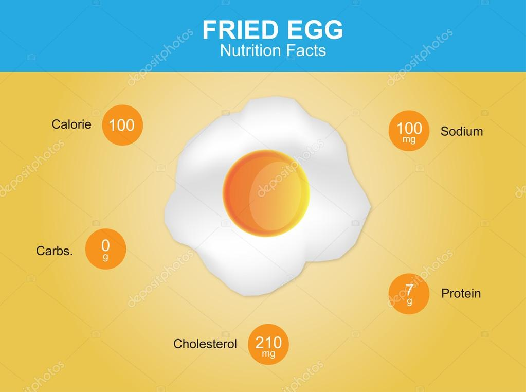 fried egg nutrition facts, fried egg with information, fried egg vector