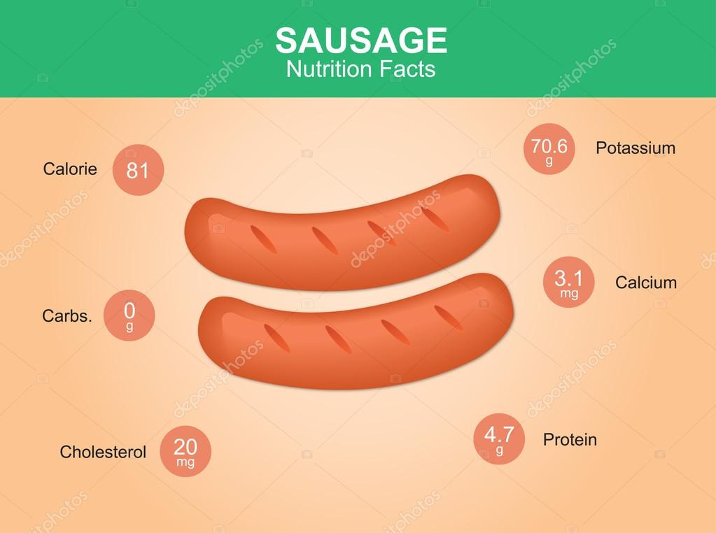 sausage nutrition facts, sausage with information, sausages vector